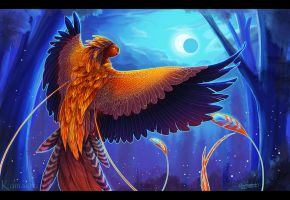 Night Phoenix by Kamakru