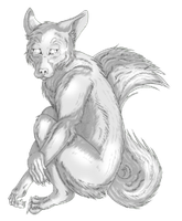 Anthro Wolf 'look' pose Freebie by ShaunWhatAreYouDoing