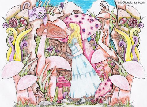 Alice in Wonderland by Anti-paradoxical