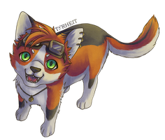 Gold Toony the first by Torheit-die-Katze