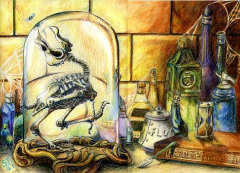 Magical Skeleton by sscrewdriver