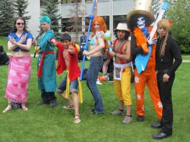 One Piece Crew-Otafest 2012 by idonthaveaname999