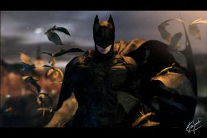 The Dark Knight Rises 3D by FelipeFierro