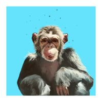 Chimp by Sophie2501
