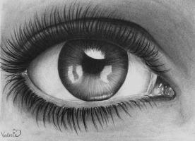 Eye in Charcoal by val1drawing
