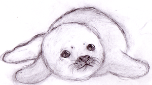 Baby Seal by leniinha