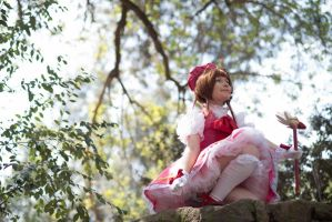 Sakura card captor by cloeth