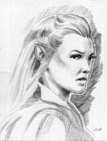 Tauriel Sketch Card ACEO by Stungeon