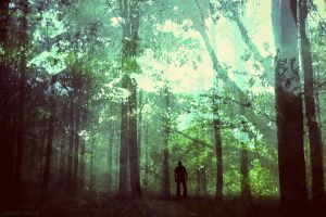 Into the Wild by SubhrajitDatta