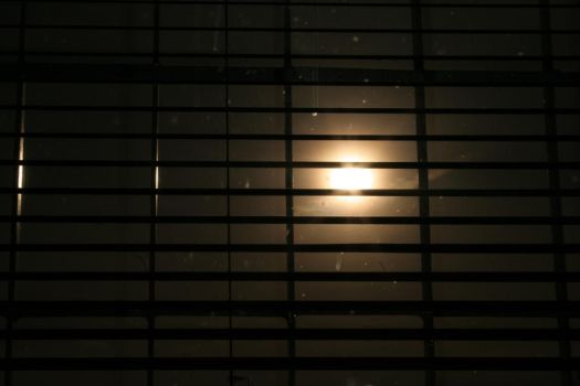 Sun shining through blinds by streamline69-stock
