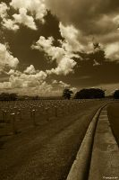 Sepia in the road by joelhgarcia