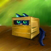 boxed cat by EiliEnie