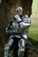 Knight in shinny ... by sandyprints