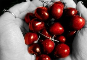 bowl of cherries by GothBarbie