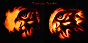 Talonflame Pumpkin by windfalcon