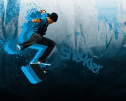 Sheckler? by Snakesan