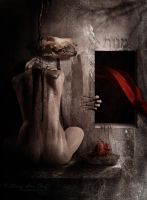 Incarceration of a Tormented Heart by SAB687