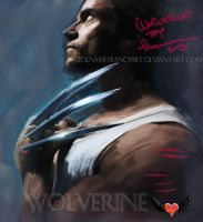 Wolverine from X-Men by NicknameFrancyBrt