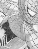 Spider-man 2 Poster Drawing by dsx100