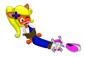 CooCoo for CoCo Bandicoot by Mr--C