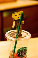 danbo series : drinkkk by rachelmyrna
