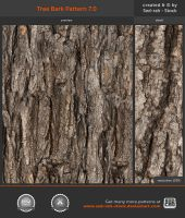 Tree Bark Pattern 7.0 by Sed-rah-Stock