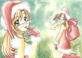 Merry_Christmas_2009 by sollamy
