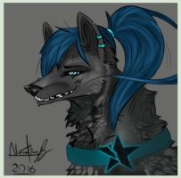 My comission of Bleu by ShadowMajoraDrowned