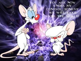 Pinky and the Brain by Simon-HackMaster