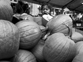 Squash by Vermontster