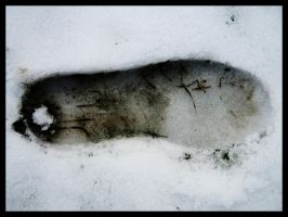 Footprints in the snow by serenitygate