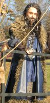 Thorin Oakenshield Cosplay 2 by miss-mustang