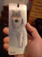 3D Holographic Wolf Bookmark by LonelyWerewolf123