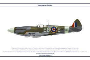 Spitfire Mk XII GB 41 Sqn 2 by WS-Clave