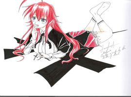 Rias-Gremory 2 by Pairbornd