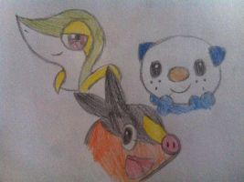 The 3 starter from Pokemon Black and White! by SailorPokeYuna