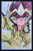 Saint Seiya - 30 years by Kenuma