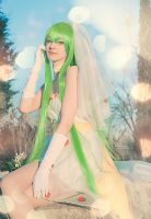 C.C. - Code Geass- Romantic ver. III by Shirokii