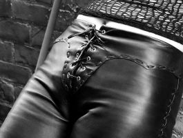 Laced up in Leather by terryt68