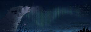 All these memories ... by hecatehell