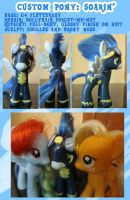 Custom Pony: Soarin by autumnalone