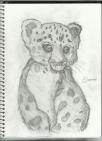 Snow Leopard Cub by Dracosia