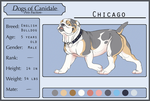 DoC: Chicago by SoldierYena