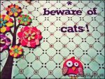 Beware of Cats by happyjolush