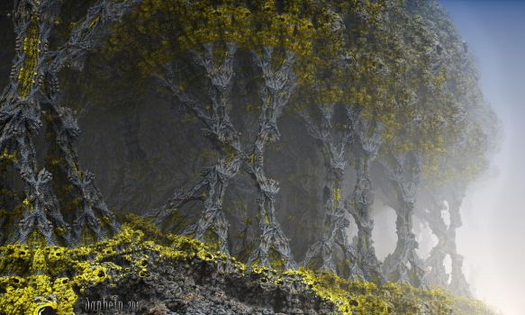 The old Forest by janhein