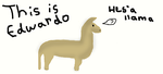 Edwardo the llama. by DarkOreo