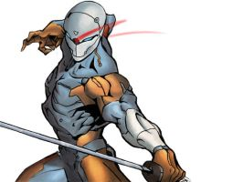 Gray Fox by xZorex