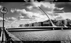 Samuel Beckett Bridge 2 by haggins11