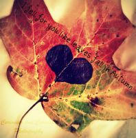leaves fall in autumn by KristaBabyDollBrown