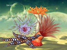 Sea Critters by oldhippieart